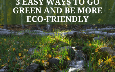 3 Easy Ways Be More Eco-Friendly