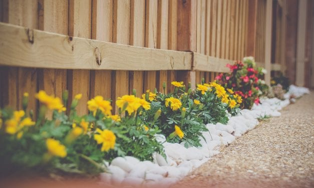 Refresh Your Outdoor Space for Summer